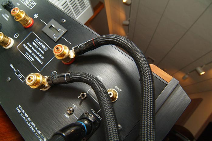Silent Source speaker cables attached to amplifier